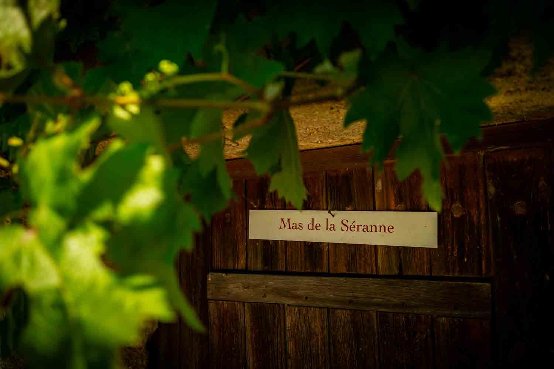 mas-seranne-vin-vente-domaine-degustation-caves-bio-languedoc_Venture_photo_Petiot9